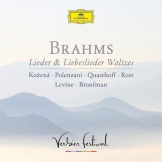 Photo No.1 of Brahms: Lieder, Liebeslieder & Waltzes