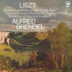 Photo No.1 of Liszt: Fantasia and Fugue on Bach & Variations on Weinen Klagen (LP 180g)