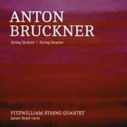 Photo No.1 of Bruckner: Quintet & Quartet