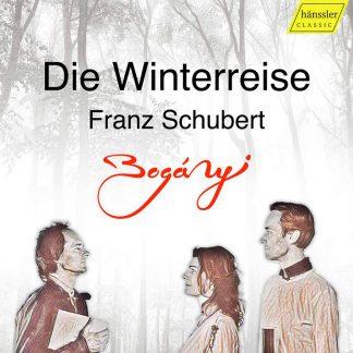 Photo No.1 of Franz Schubert: Winterreise, Op. 89, D. 911 (Arr. for Oboe, Bassoon & Piano)