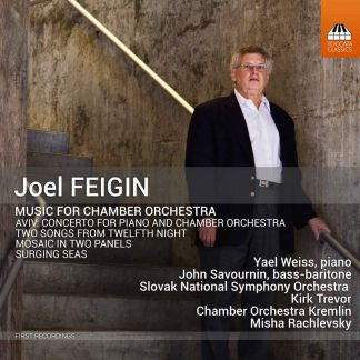 Photo No.1 of Joel Feigin: Music For Chamber Orchestra